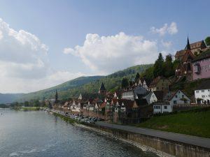 Hirschorn am Neckar